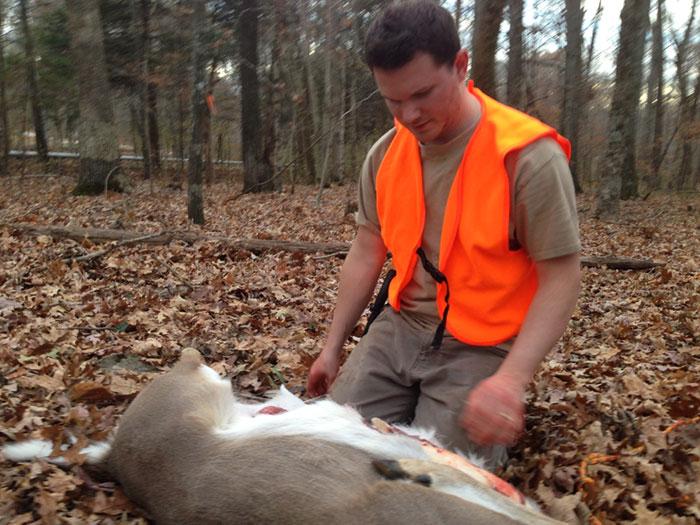 deer-start