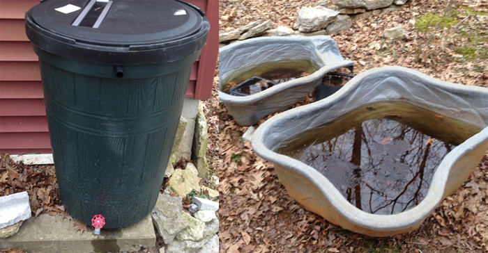 The left is an offical rain barrel, the right is a future project that doubles as the cat waterer.