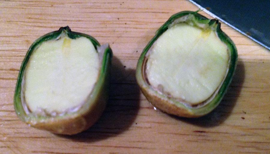 acorns-perfect